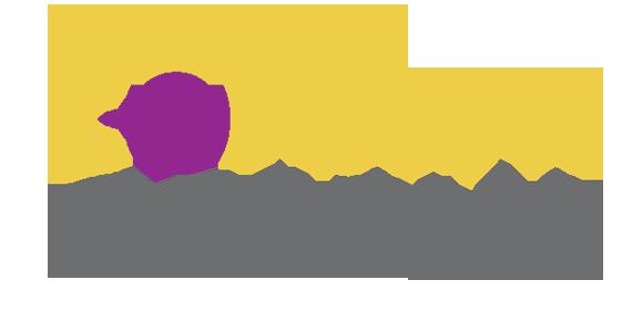 Content-Options